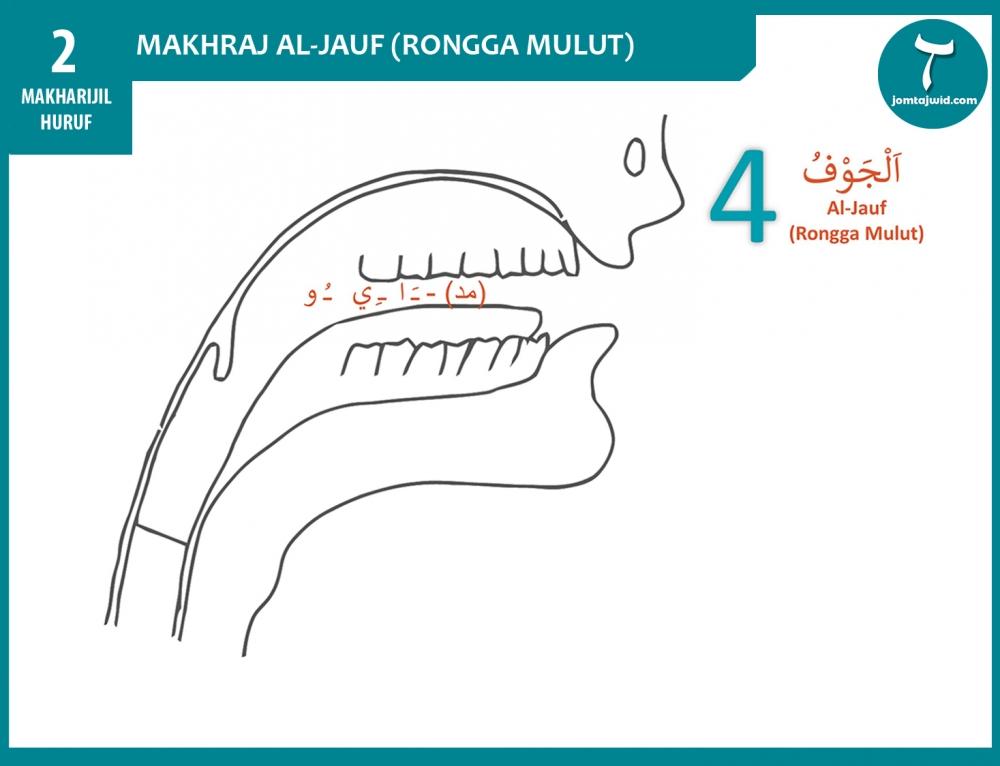 Makhraj Al-Jauf (Rongga Mulut)
