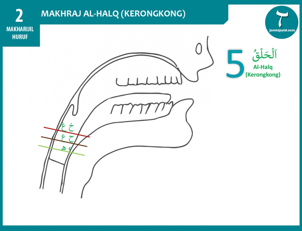 Makhraj Al-Halq (Kerongkong)